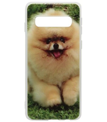 ADEL Siliconen Back Cover Softcase Hoesje voor Samsung Galaxy S10 Plus - Dwergkees Pomeriaan Hond