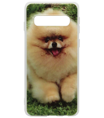 ADEL Siliconen Back Cover Softcase Hoesje voor Samsung Galaxy S10 - Dwergkees Pomeriaan Hond